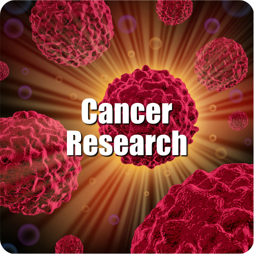 02-CANCER-DISEASE-1