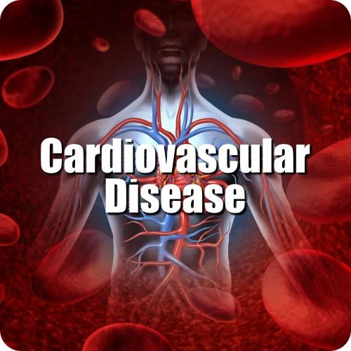 05-CARDIOVASCULAR-DISEASE-1